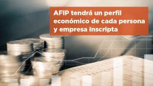 AFIP tendrá un perfil económico de cada persona y empresa inscripta